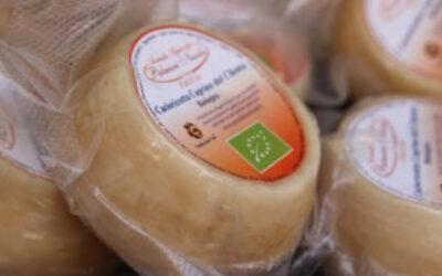 True Italian Taste #SlowFoodExperience: Cacioricotta del Cilento