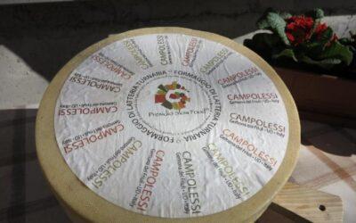 True Italian Taste #SlowFoodExperience: Formaggio Latteria Turnaria