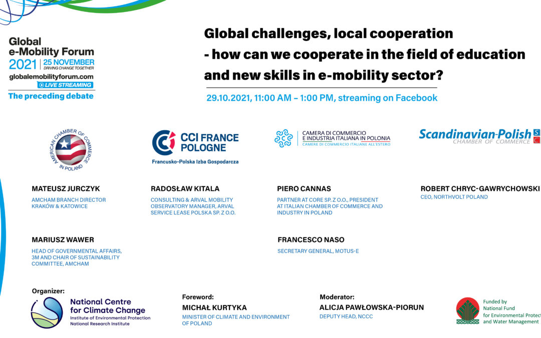 Webinar: Global challenges, local cooperation – how we can cooperate in the field of education and new skills in e-mobility sector?
